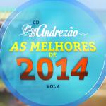 Blog do Andrezão – CD Vol.4 – As Melhores de 2014