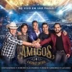Amigos – CD A História Continua